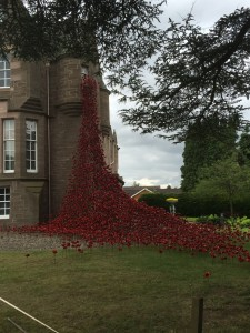 Black Watch Museum Poppy Weeping Window 2